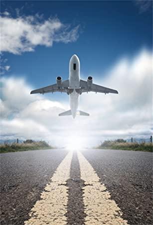 Летящий самолёт на родину.