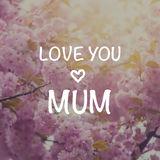 Ich liebe dich von ganzem Herzen  Mama