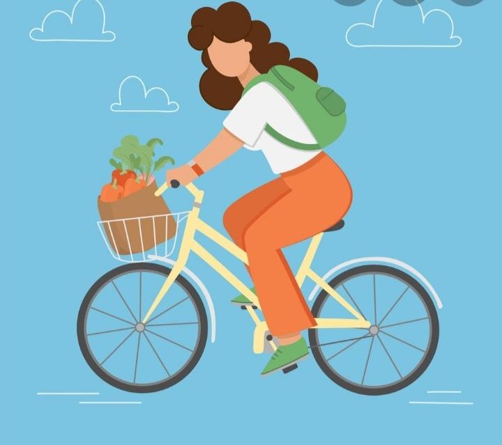 На велосипеде каждый день.