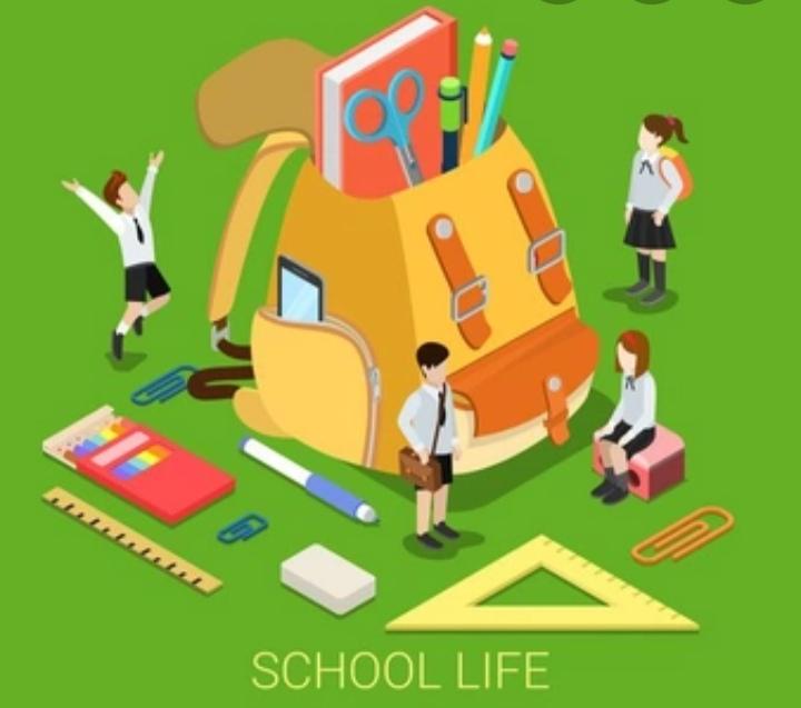 Школьная жизнь.